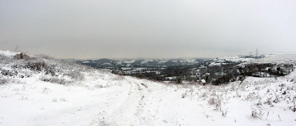 29188 - Snowy Scenes