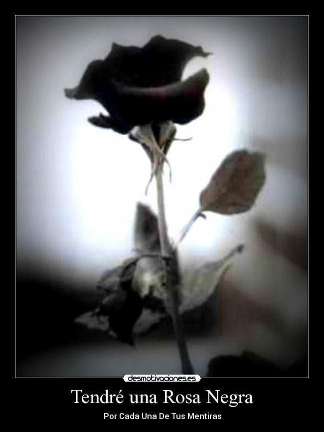 Tendré Una Rosa Negra Desmotivaciones