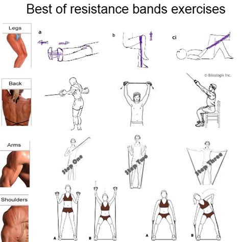 resistance bands exercises    yamenalrantese