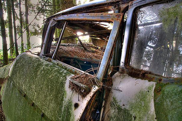 Chatillon-car-cemitério abandonado-carros-cemitério-Bélgica-12
