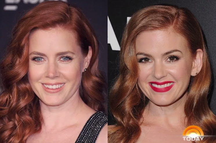 Isla Fischer Pasted Amy Adams' Face on Her Family Christmas Cards and No One Noticed