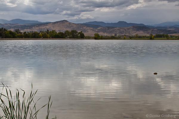 shimmering water in a lake in Longmont Colorado