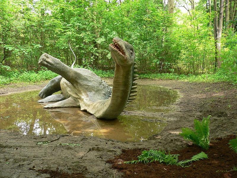 Resultat d'imatges de diplodocus