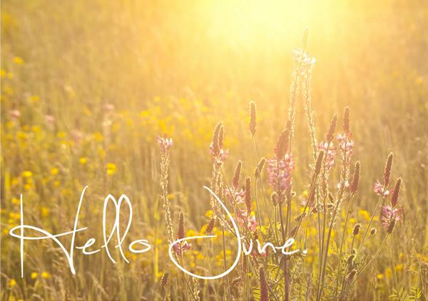 Tentang Juni, Tentang Curahan Hati ku Kepadamu?