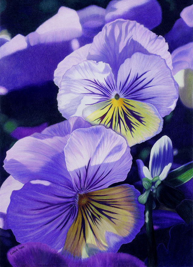 35 Beautiful Flower Drawings And Realistic Color Pencil Drawings World Of Arts