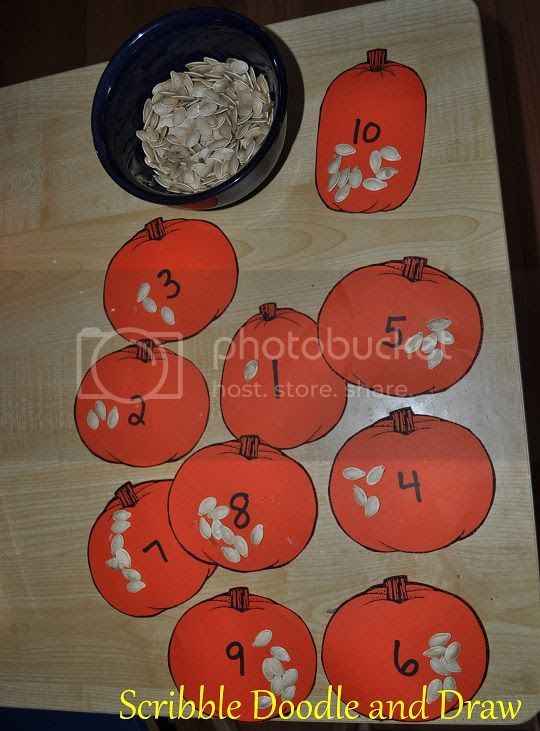 Practice counting with pumpkin seeds placed on numbered pumpkins