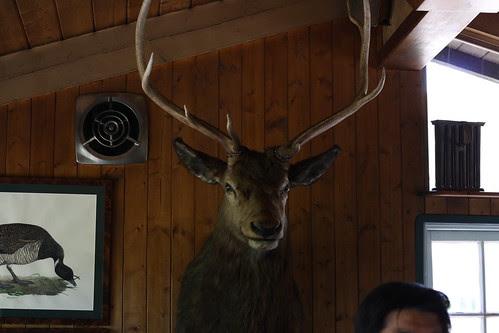 Saddle Peak Lodge