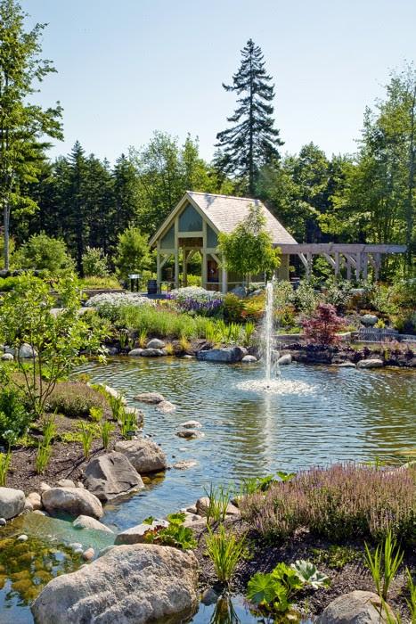 Carolyns Shade Gardens The Joy Of Gardening In The Shadows