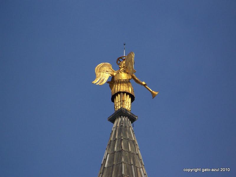 Padua - Look Homeward Angel