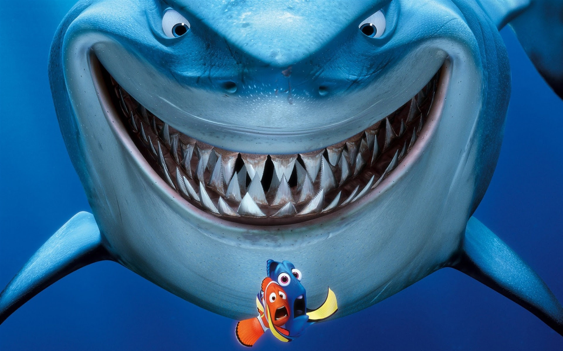 Finding Nemo 3d Animasi Hd Wallpaper 3d And Abstract Wallpaper