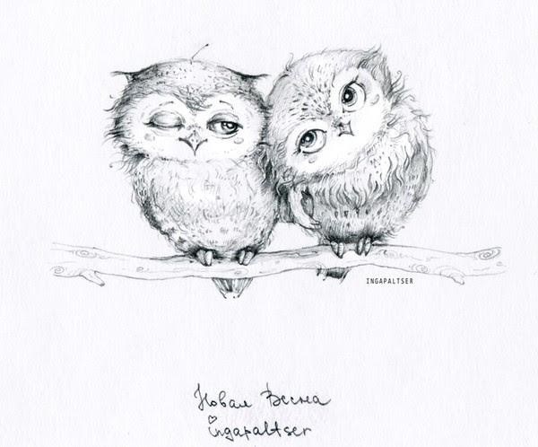 owl_600x498_044