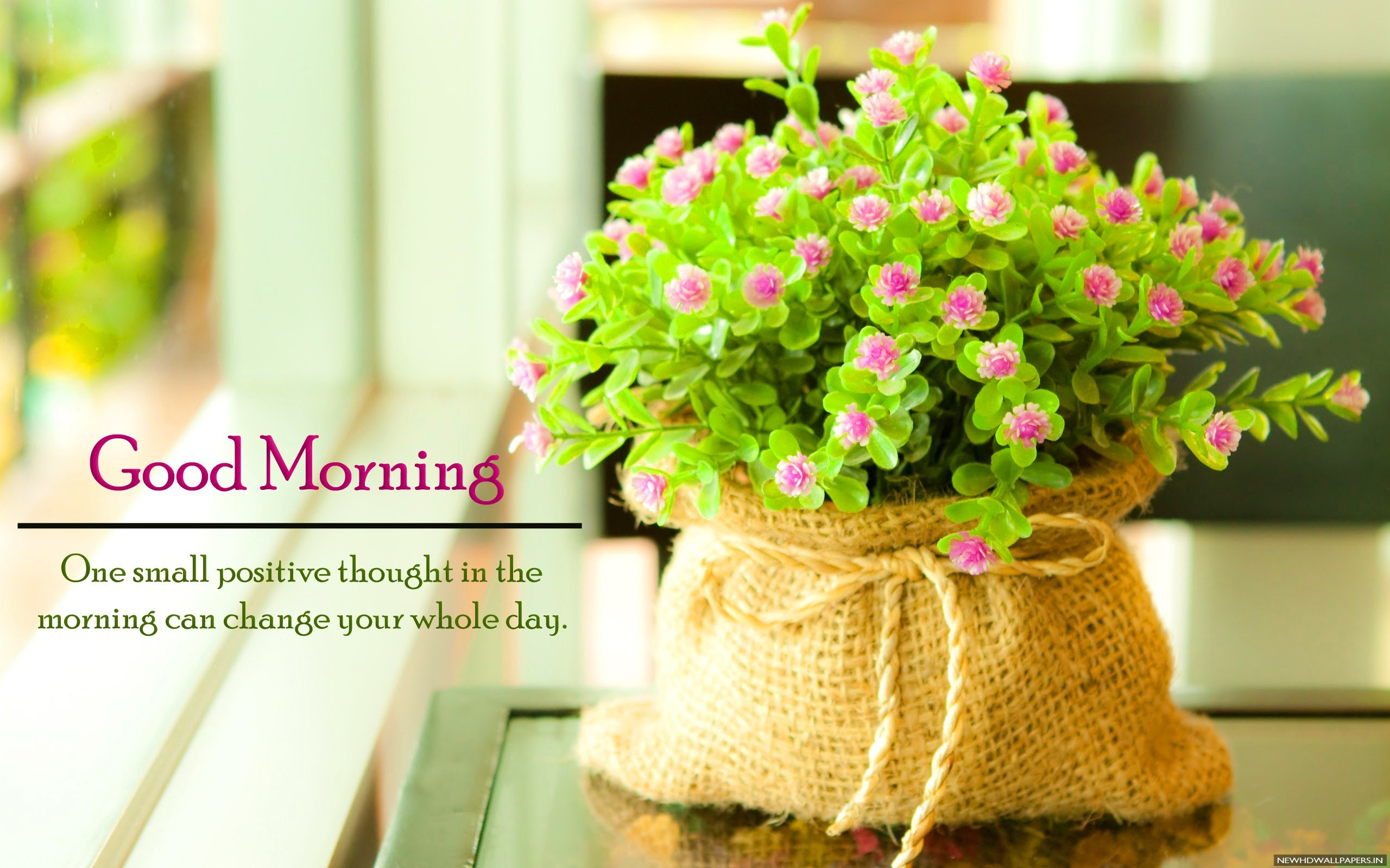 Download Best Good Morning Quote Flowers Hd Wallpaper Good Morning