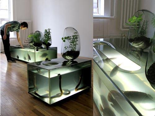 DIY Aquaponics Fish Tank