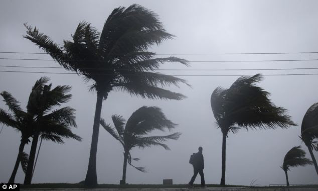 Stranded: A man walks along a seaside park as Hurricane Irene passes to the east of Nassau on New Providence Island in the Bahamas