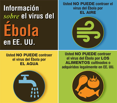 Facts about Ebola Virus infographic (Spanish)