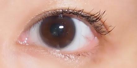 ipsa eyelash curler eyelash treatment serum