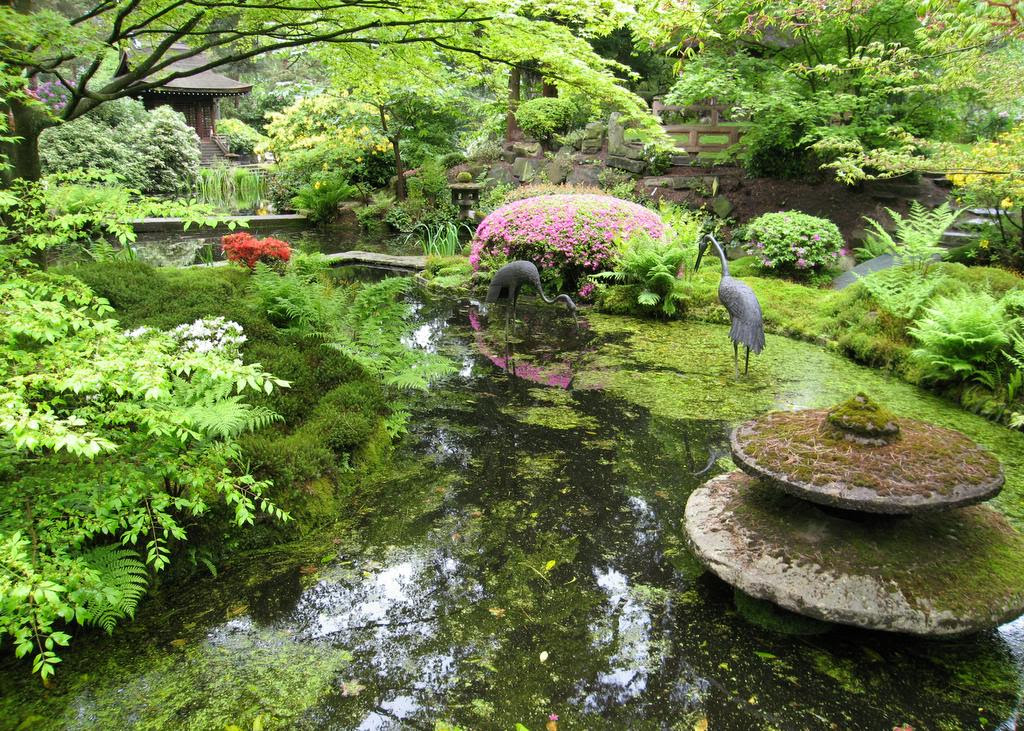 japanese garden19