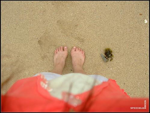 很乾淨的沙灘