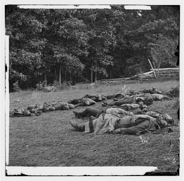 [Gettysburg, Pa. Confederate dead gathered for burial at the southwestern edge of the Rose woods, July 5, 1863]