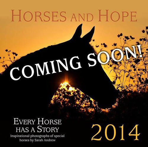 Coming soon! 2014 Horses and Hope calendar!