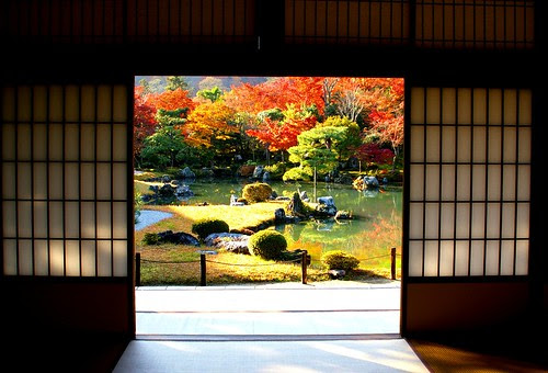 Traditional Japanese garden in autumn by hoita
