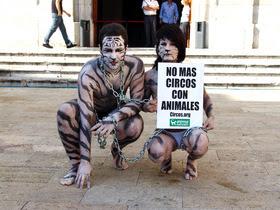 Activistas protestan en Tarragona contra los circos con animales
