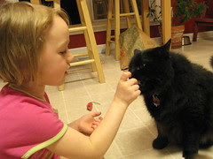 Huggy Bear eating from Gracie's hand