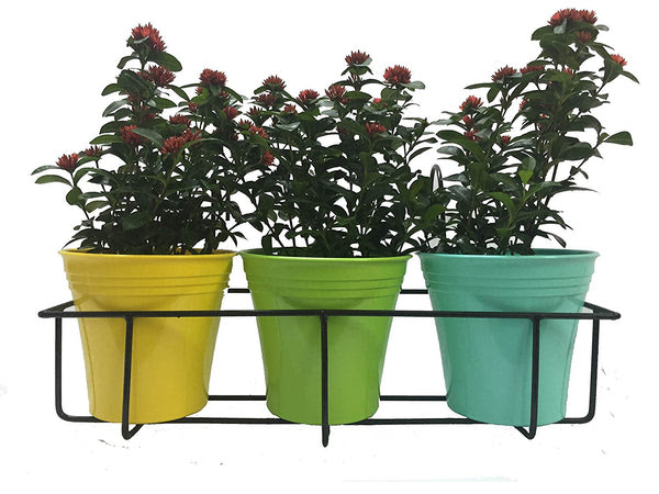 Balcony Railing Planter Cum Grill Mountable Flower Pot Stands The Plant Shop Plant Nursery In Chennai With Best Online Sales