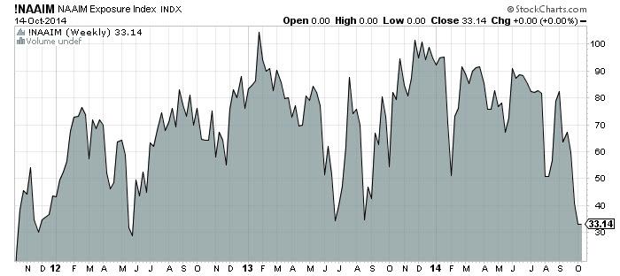 NAAM Exposuer Index Chart