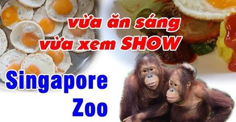 Nhiều điều bất ngờ tại Sở Thú Singapore Zoo | Du Lịch Ăn Uống Singapore EP 06
