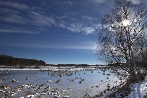Flooded and iceed Ilmenau meadow #2