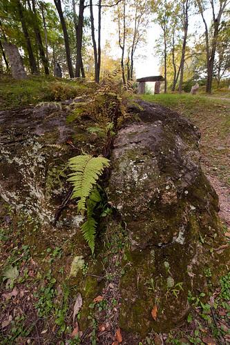 Split Stone.