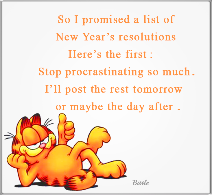 Image result for garfield new year's resolution