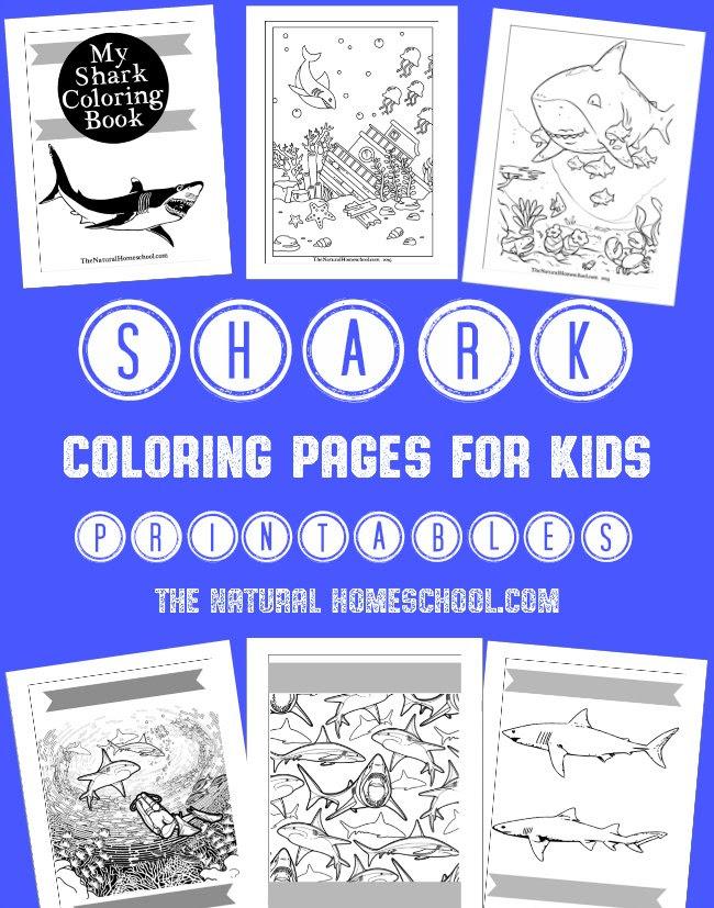 FREE Shark Week Coloring Book Printables   Free Homeschool ...
