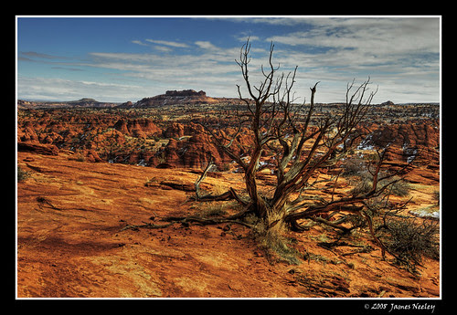 Coyote Buttes Wilderness