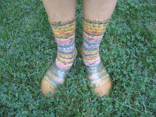 Lupin socks