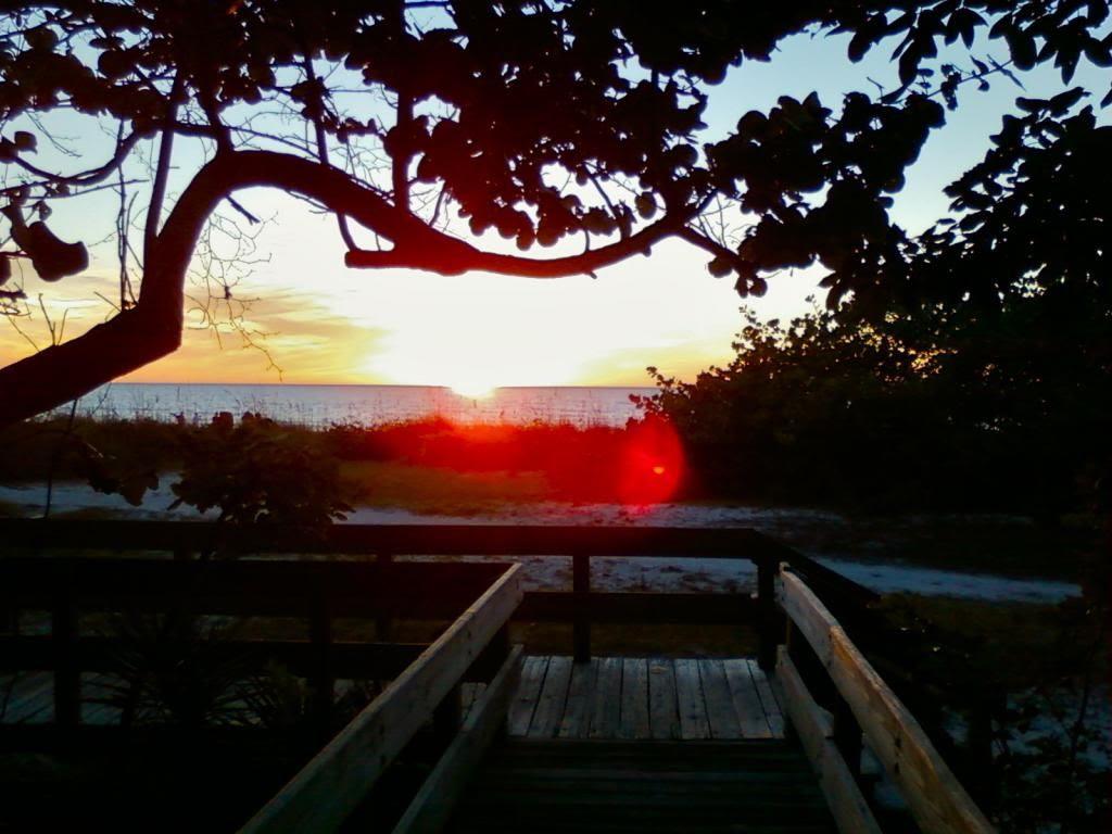 Wiggins Sunset