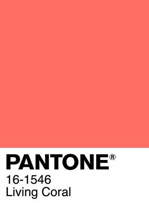 Resultado de imagem para cor pantone 2019