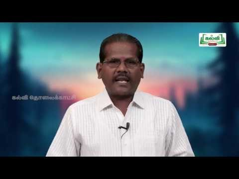 NEET Zoology  Animal Kingdom Kalvi TV