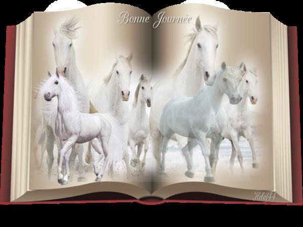 """Résultat de recherche d'images pour """"le petit cheval blanc"""""""