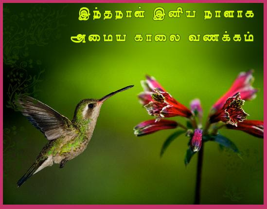 Tamil Good Morning Message Post Card From 365greetingscom