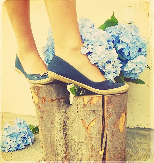 blue hydrangeas for a beautiful Monday