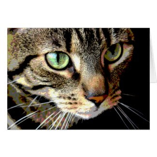 Tabby Cat Art Card