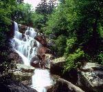 Summer - Ramsey Cascades
