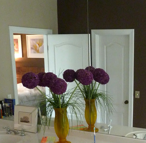 P1000100-2009-12-31-Tripod-On-Wall-Purple-Zen-View