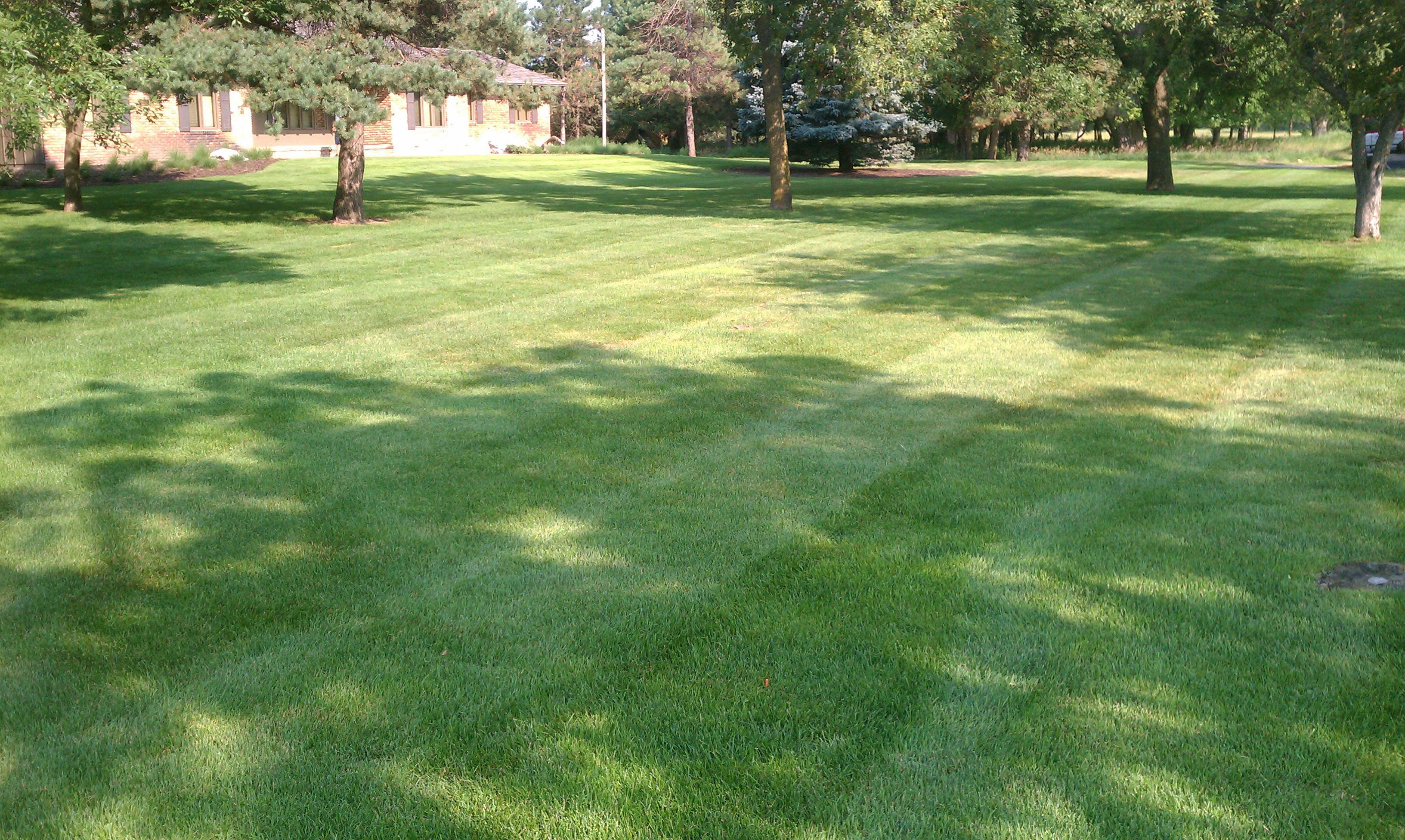 Pro Lawn Care Pro Grass Lawn And Landscaping