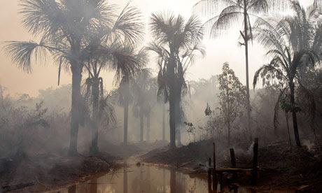 MDG: Brazil Climate change: drought