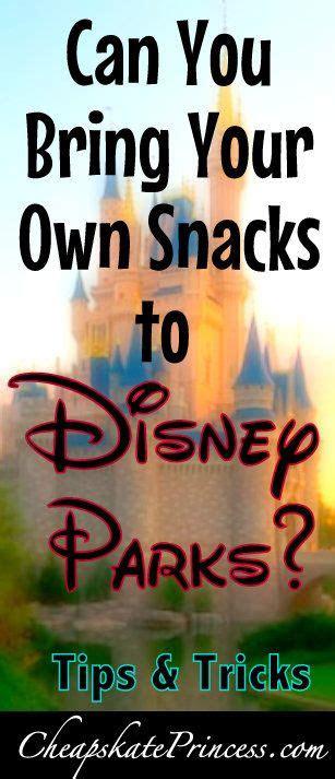 bringing food  disney world theme parks  cheapskate