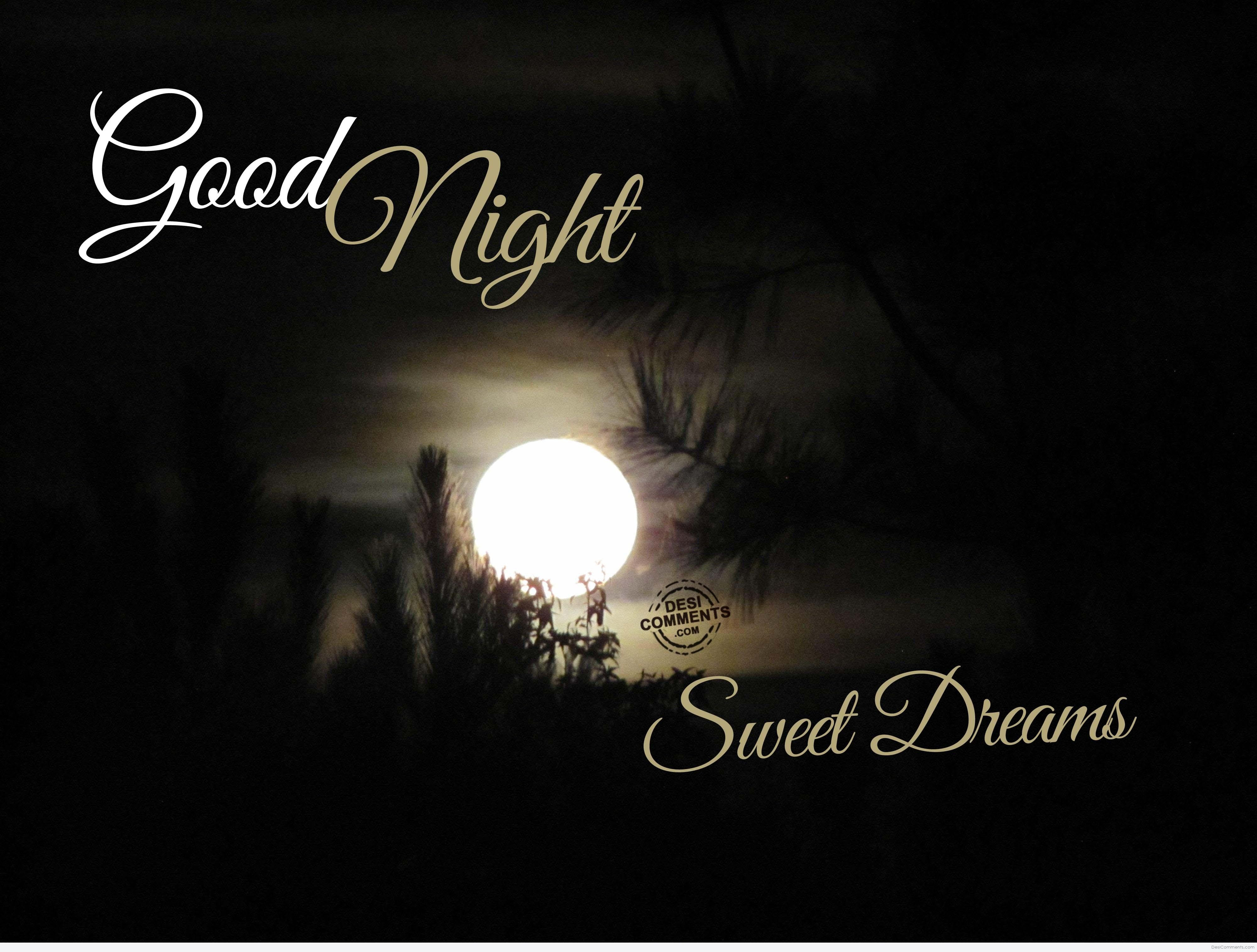 Good Morning And Good Night Sms Morning Wishes Good Night Wishes