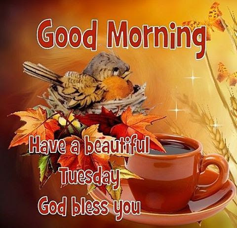 Good Morning Have A Beautiful Tuesday God Bless You Pictures